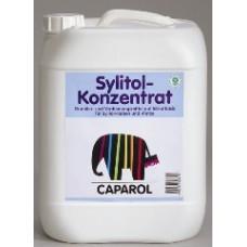 Sylitol-Konzentrat